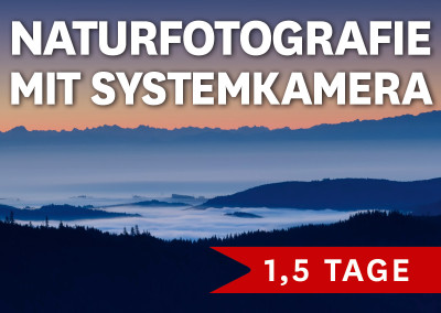 NATURFOTOGRAFIE MIT SYSTEMKAMERA