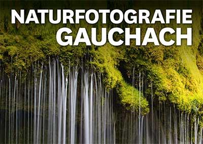 Naturfotografie Gauchachschlucht