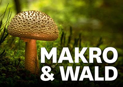 MAKRO & WALD