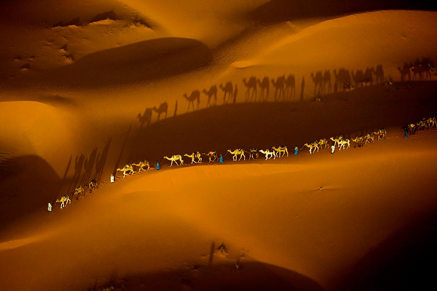Aerial of camel trainSahara Desert, Morocco