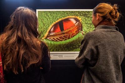 """CEWE Fotoausstellung """"Jäger des Lichts"""""""