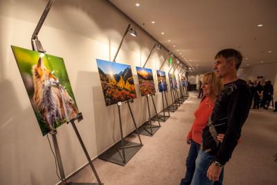 """Martin Mägli: Ausstellung """"Swiss Nature"""""""