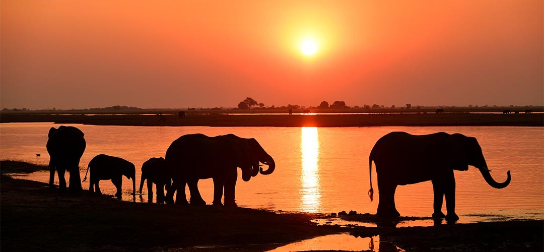 Namibia-Botswana-Sbampato-09