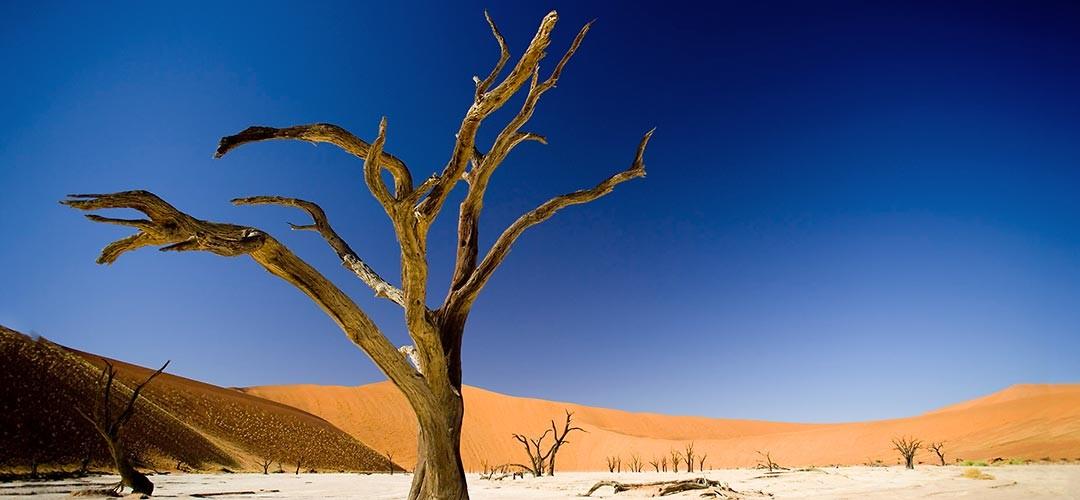 Namibia-Reiner-Harscher-01
