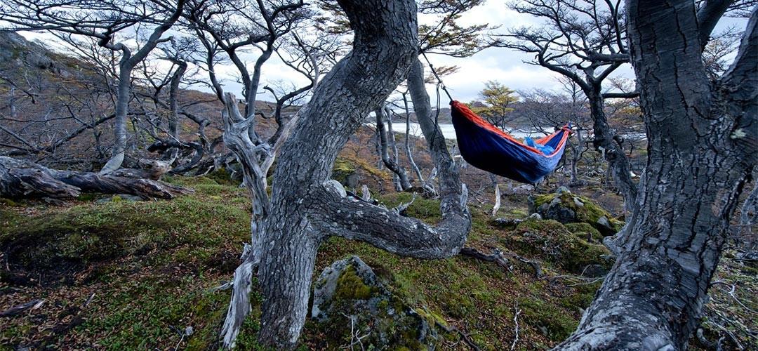 Patagonien-Gregor-Sieböck-08