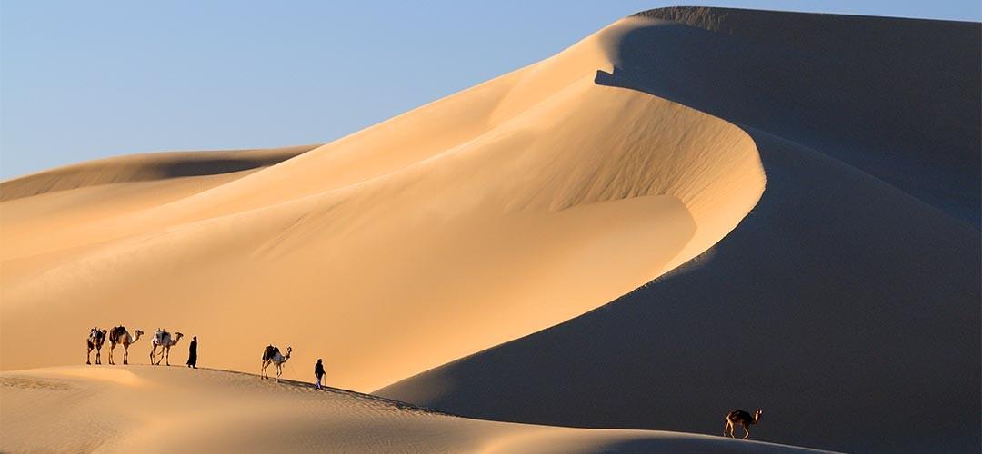 Sahara-Andrea-Nuss-06