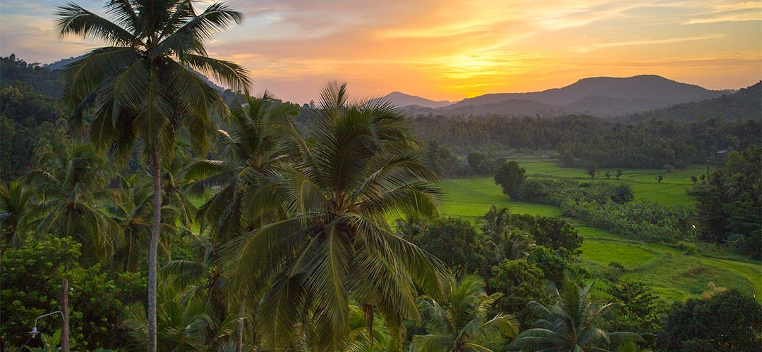 Sri-Lanka-Barbara-Vetter-01