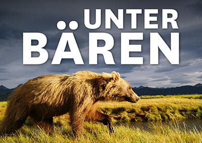 UNTER BÄREN II