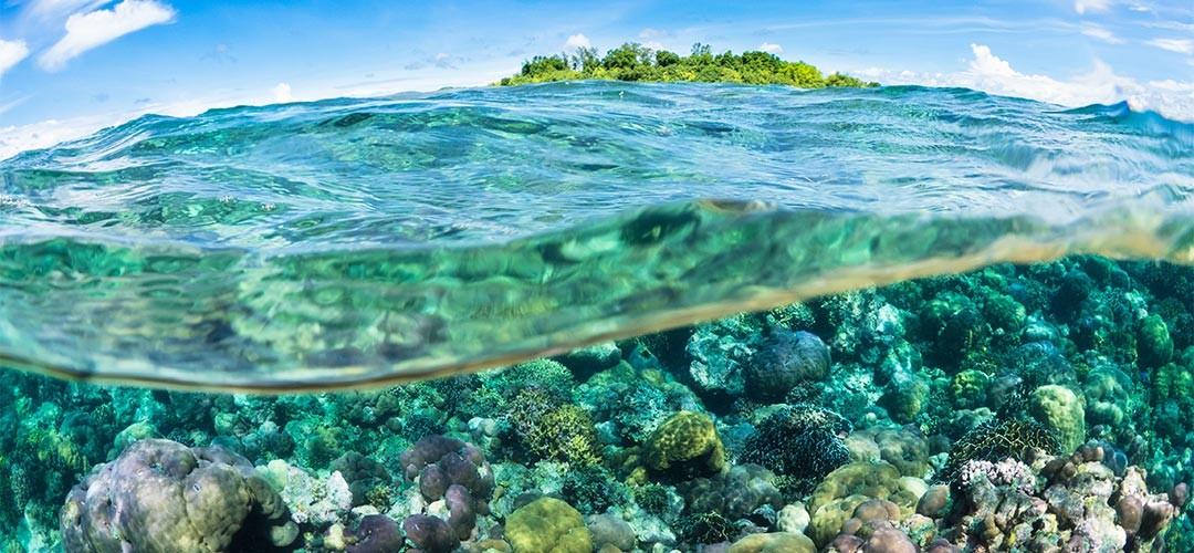 Unterwasserfotografie-Benz-03