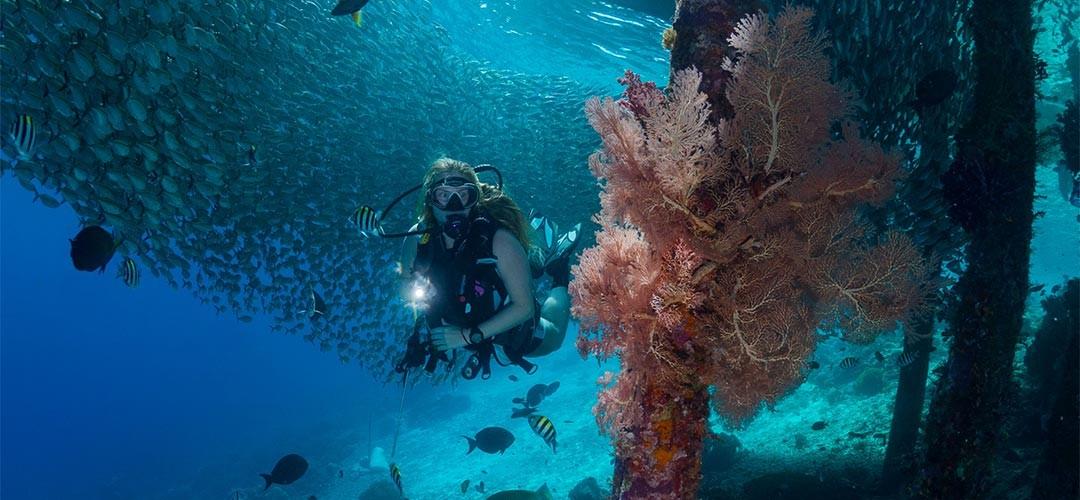 Unterwasserfotografie-Benz-05