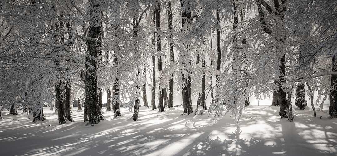Winterlandschaft_uk_G4