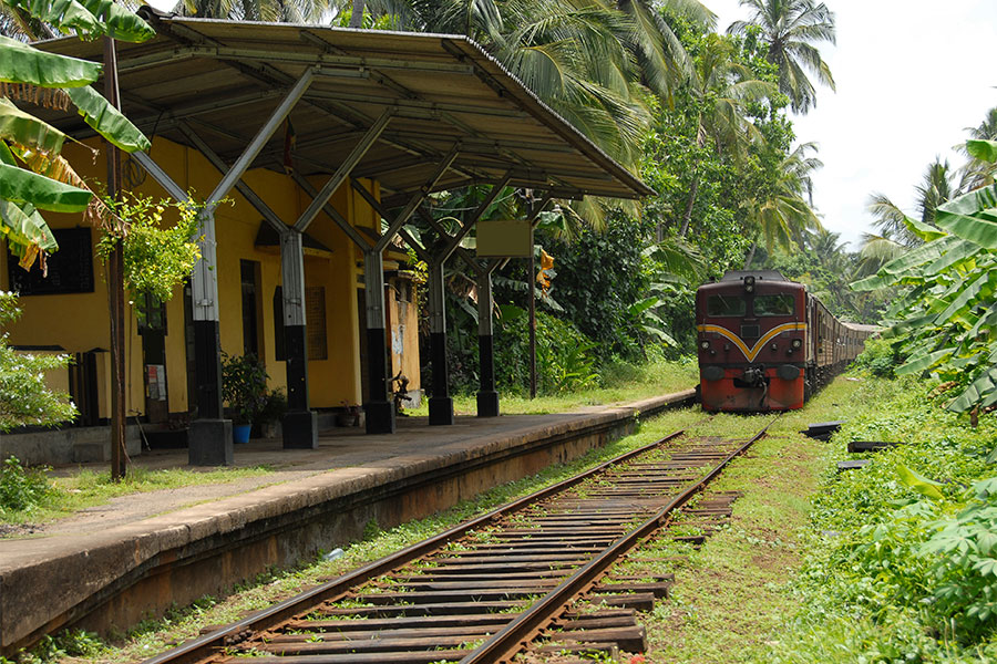 World Insight_Reise_SriLanka_9x6_3