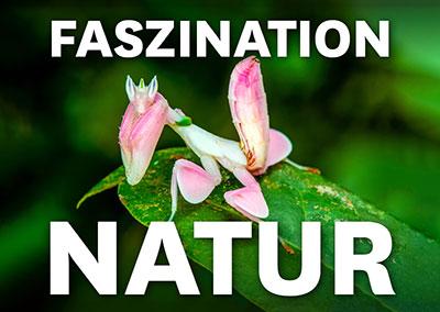 FASZINATION NATUR - NATURREICH