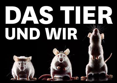 DAS TIER - UND WIR! Festivaleröffnung 2019