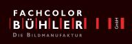 logo_buehler2011