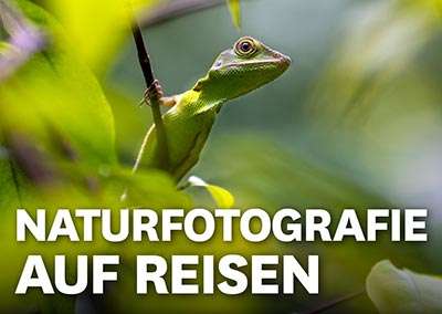 NATURFOTOGRAFIE AUF REISEN